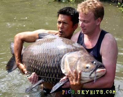 世界上最凶猛的鱼-搜寻全球最大怪异猛鱼